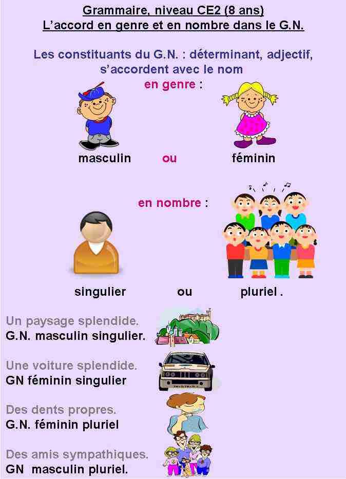 GN accord -genre et nombre -CE2