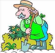 Paysagiste allemand for Le jardinier