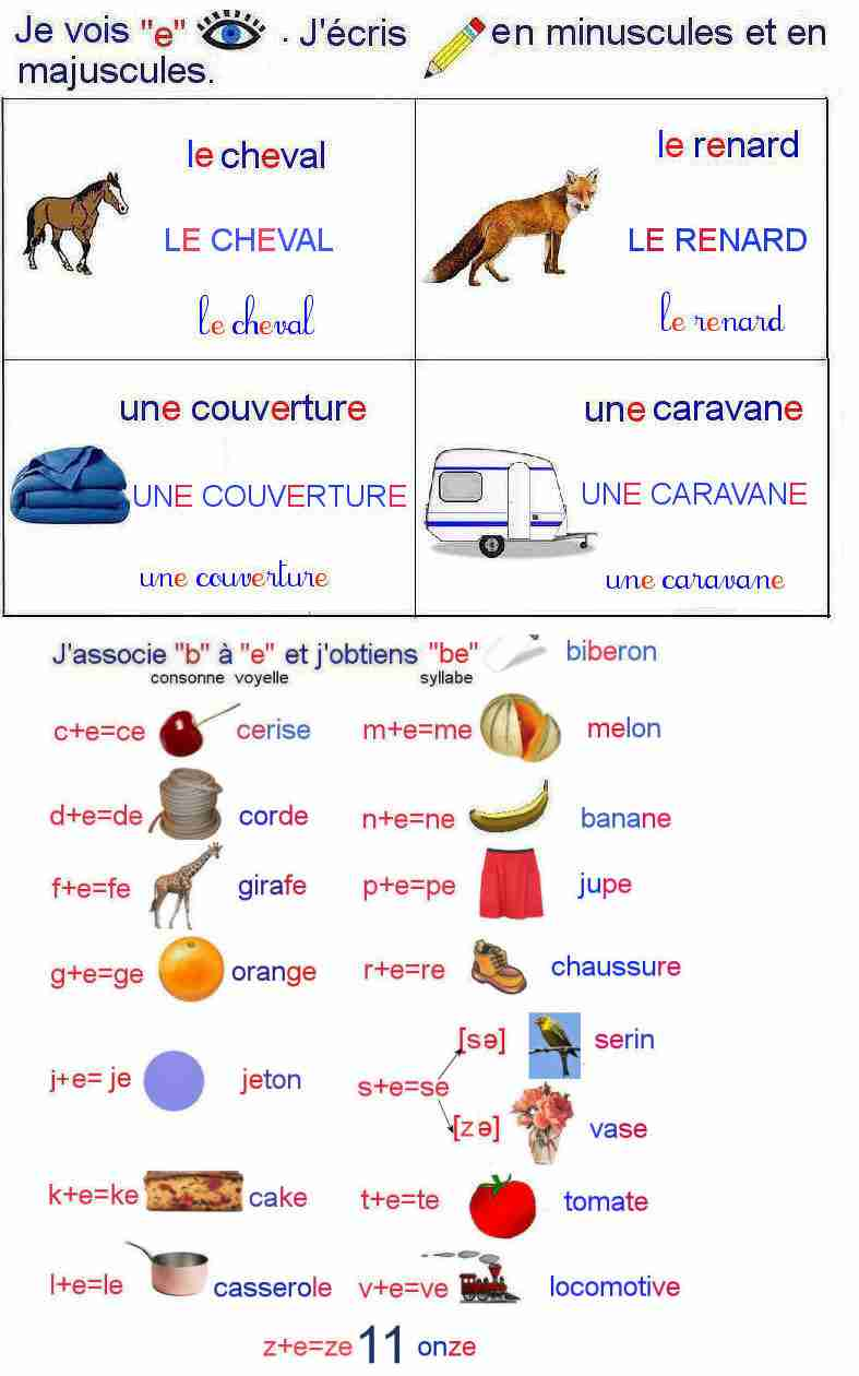Lecture 5g Cycle1(CP/CE1)- La lettre e - Lire, comprendre et-French
